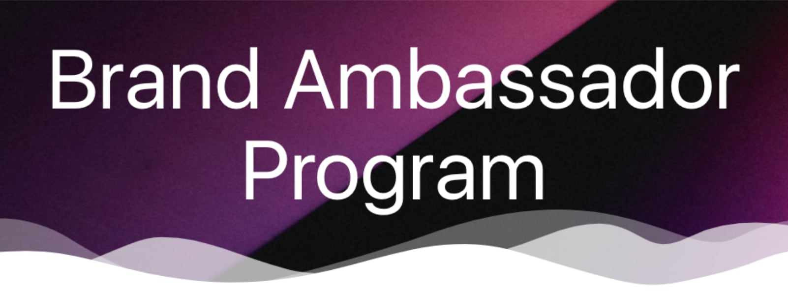 Brand Ambassador Program